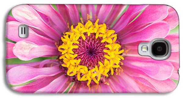 Hot Pink Zinnia Galaxy S4 Case