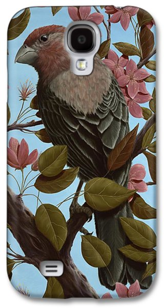 House Finch Galaxy S4 Case