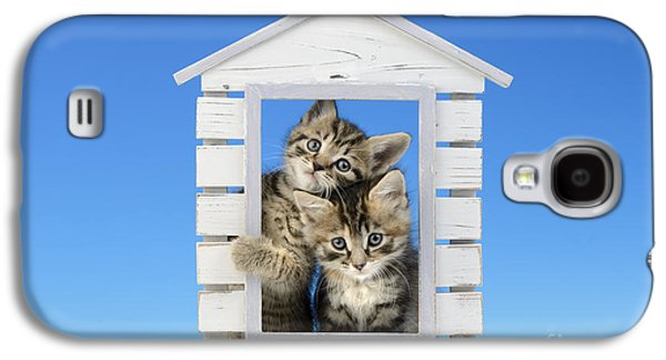 House Of Kittens Ck528 Galaxy S4 Case by Greg Cuddiford