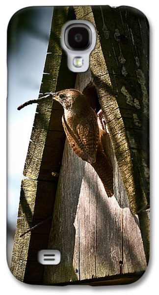 House Wren At Nest Box Galaxy S4 Case