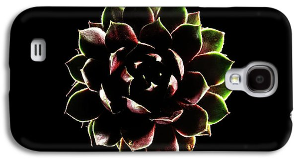 Houseleek (sempervivum Tectorum) Galaxy S4 Case by Gilles Mermet