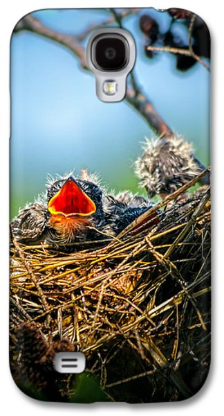 Hungry Tree Swallow Fledgling In Nest Galaxy S4 Case by Bob Orsillo