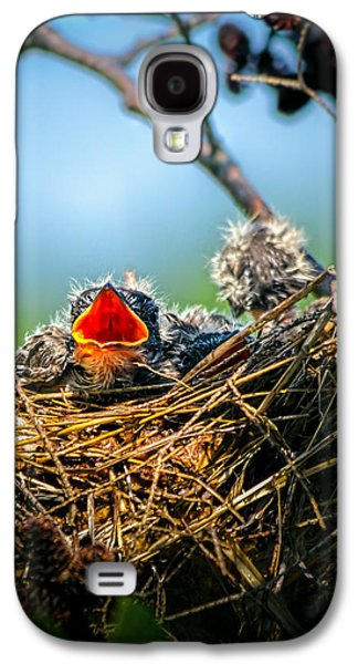 Swallow Galaxy S4 Case - Hungry Tree Swallow Fledgling In Nest by Bob Orsillo