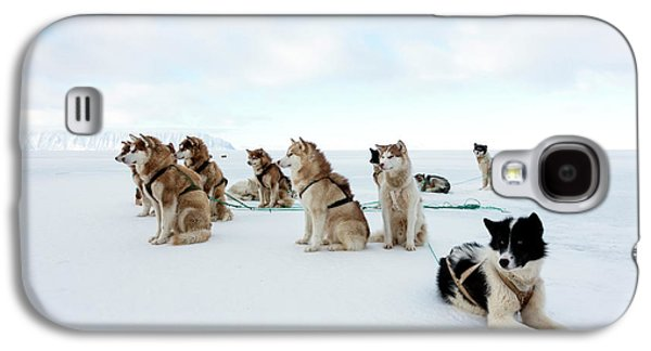Husky Sled Dogs Galaxy S4 Case by Louise Murray