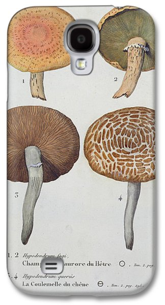 Hypodendrums Fagi And Queris Galaxy S4 Case by Fossier
