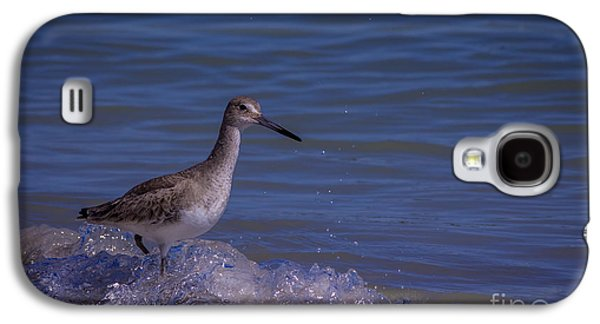 Sandpiper Galaxy S4 Case - I Can Make It by Marvin Spates