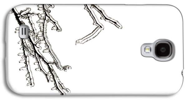 Ice On Branches Galaxy S4 Case