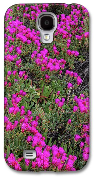 Ice Plant Along The Pacific Ocean Galaxy S4 Case
