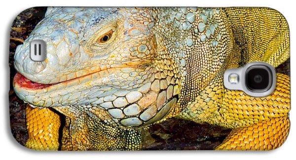 Python Galaxy S4 Case - Iggy by Carey Chen