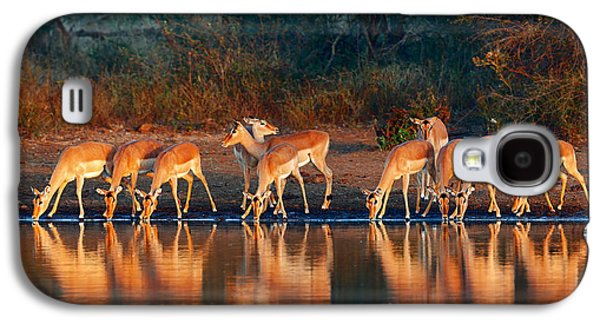 Impala Herd With Reflections In Water Galaxy S4 Case by Johan Swanepoel