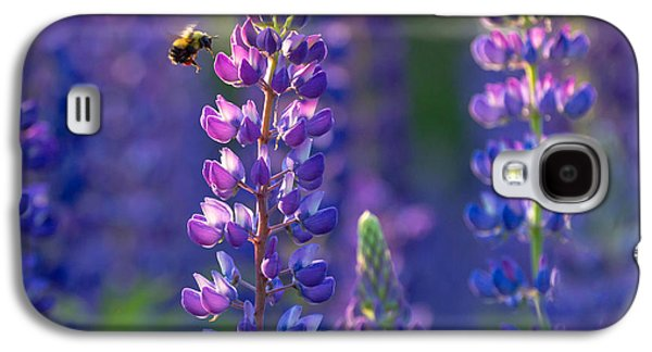 In The Land Of Lupine Galaxy S4 Case by Mary Amerman
