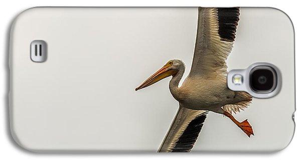 Incoming Pelican Galaxy S4 Case by Paul Freidlund