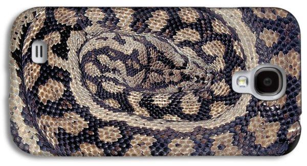 Inland Carpet Python  Galaxy S4 Case