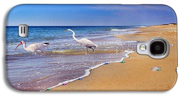 Inspiring Ibis Egret Sandpiper Starfish Sand Dollars  Galaxy S4 Case