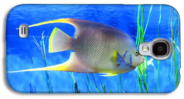 Into Blue - Tropical Fish By Sharon Cummings Galaxy S4 Case by Sharon Cummings