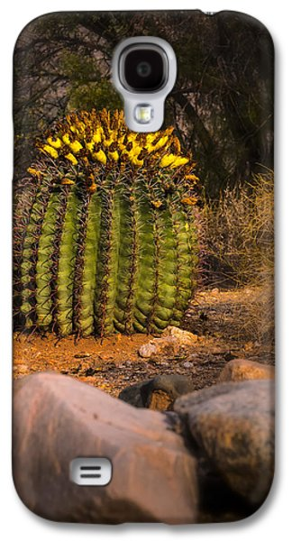 Galaxy S4 Case featuring the photograph Into The Prickly Barrel by Mark Myhaver