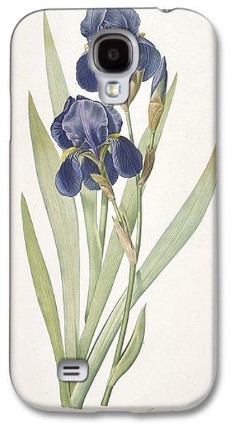 Iris Germanica Bearded Iris Galaxy S4 Case