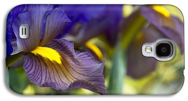 Iris Hollandica Eye Of The Tiger Galaxy S4 Case by Tim Gainey