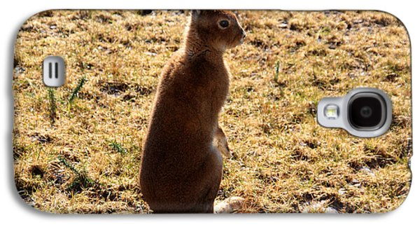 Irish Mountain Hare Galaxy S4 Case by Aidan Moran