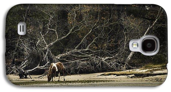 Island Pony Galaxy S4 Case