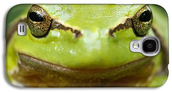 It's Not Easy Being Green _ Tree Frog Portrait Galaxy S4 Case