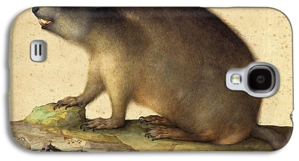Jacopo Ligozzi Italian, 1547 - 1627, A Marmot With A Branch Galaxy S4 Case by Quint Lox