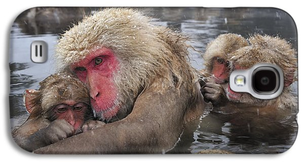 Japanese Macaque Grooming Mother Galaxy S4 Case by Thomas Marent