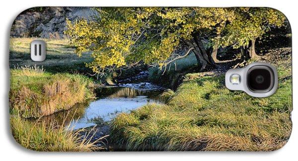 Jordan Creek Autumn Galaxy S4 Case by Bruce Morrison