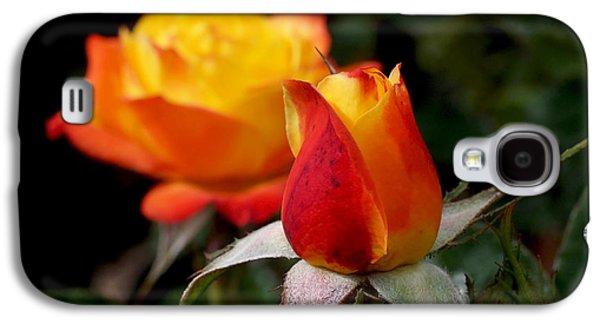 Judy Garland Rose Galaxy S4 Case