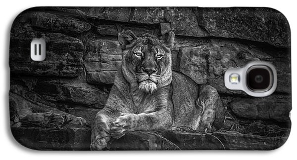 Keen Eyed Lioness Galaxy S4 Case