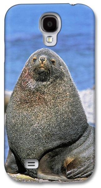 Kerguelen Fur Seal, Antarctic Fur Seal Galaxy S4 Case by Martin Zwick