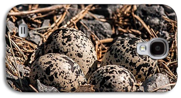 Killdeer Nest Galaxy S4 Case by Lara Ellis