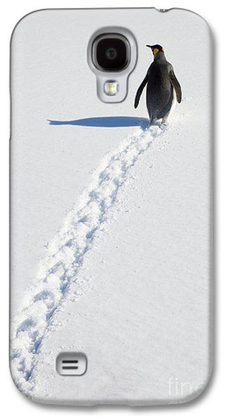 King Penguin And Tracks S Georgia Island Galaxy S4 Case by Yva Momatiuk and John Eastcott