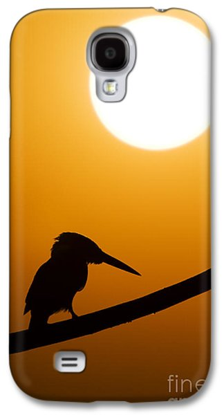 Kingfisher Sunset Silhouette Galaxy S4 Case by Tim Gainey