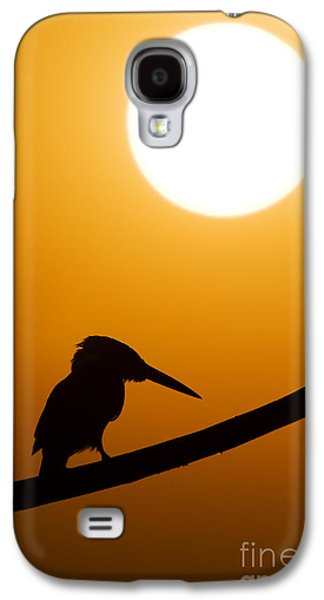 Kingfisher Sunset Silhouette Galaxy S4 Case