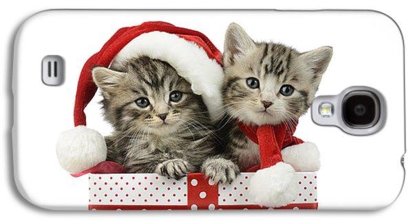 Kitten In Presents Galaxy S4 Case