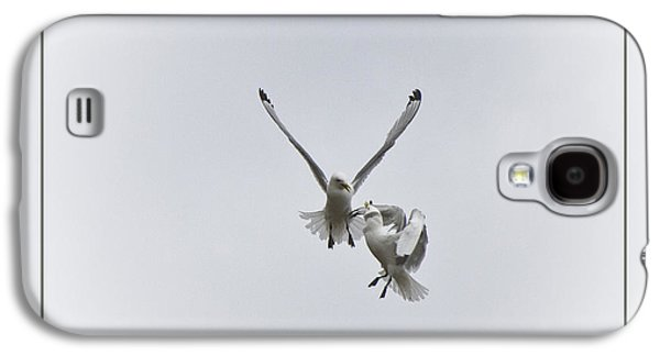 Kittiwakes Flight Galaxy S4 Case by Heiko Koehrer-Wagner