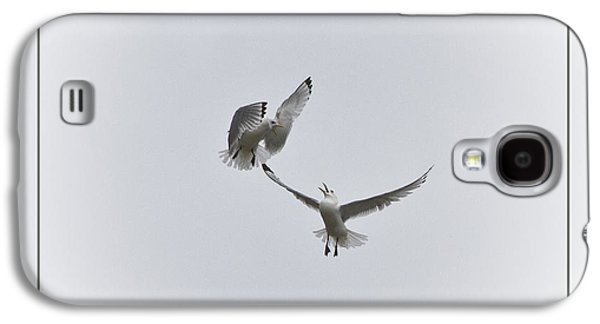 Kittiwakes Galaxy S4 Case by Heiko Koehrer-Wagner
