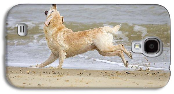 Labrador Dog Chasing Ball Galaxy S4 Case by Geoff du Feu