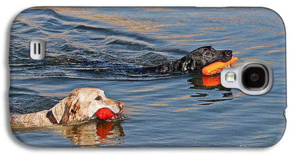 Labrador Retrievers In Pond Galaxy S4 Case by William H. Mullins