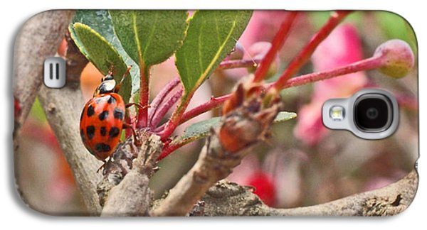 Ladybug And Crabapple Galaxy S4 Case