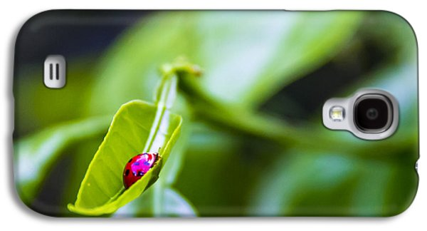 Ladybug Cup Galaxy S4 Case by Marvin Spates