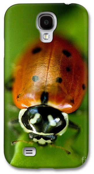 Ladybug On Green Galaxy S4 Case by Iris Richardson