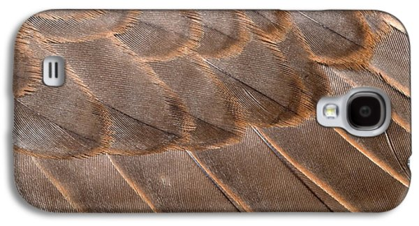 Lanner Falcon Wing Feathers Abstract Galaxy S4 Case