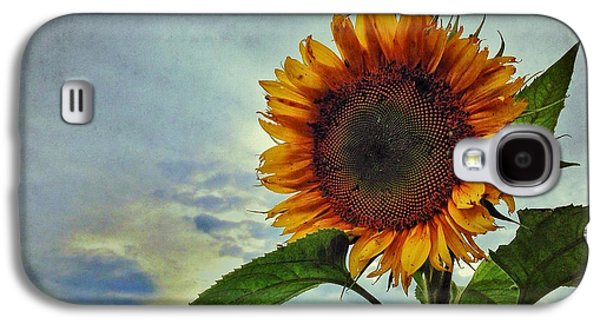 Late August Sun Galaxy S4 Case by Jame Hayes