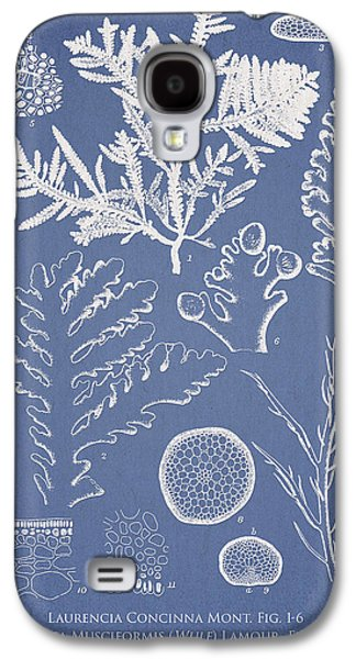 Laurencia Concinna And Hypnea Musciformis Galaxy S4 Case by Aged Pixel