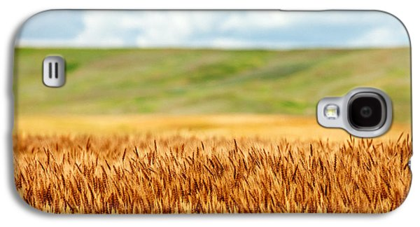 Layers Of Grain Galaxy S4 Case by Todd Klassy