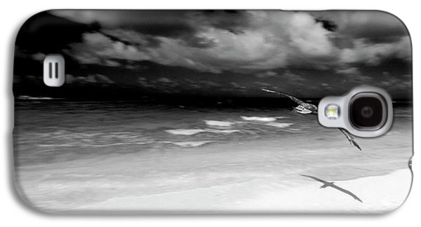 Laysan Albatross French Frigate Shoals Galaxy S4 Case by Paul D Stewart