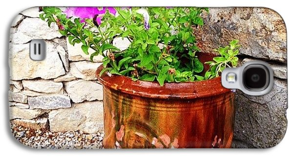 Decorative Galaxy S4 Case - Anduze Flower Pot With Petunias by Cristina Stefan