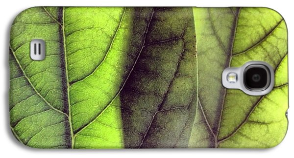 Leaf Abstract Galaxy S4 Case